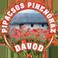Pipacsos Pihenőház Dávodon - időutazás, élmény, kikapcsolódás